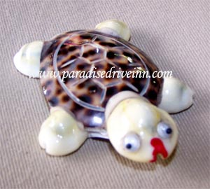 Bali Sea shell decoration