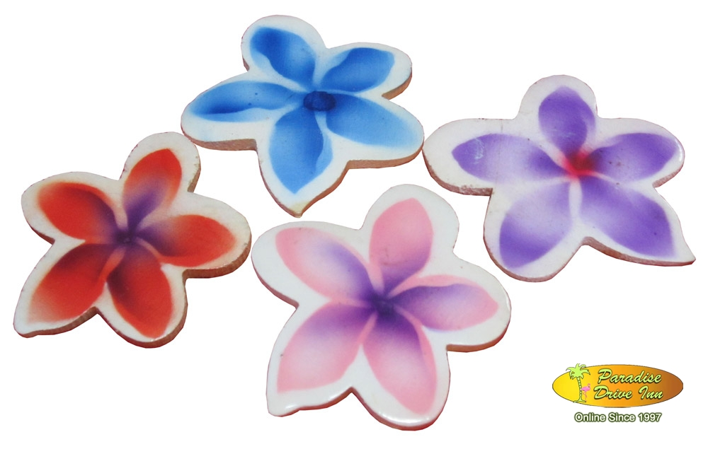Bali Assortment of 100 airbrushed fridge magnet