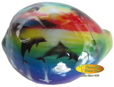 Bali Airbrushed sea shell